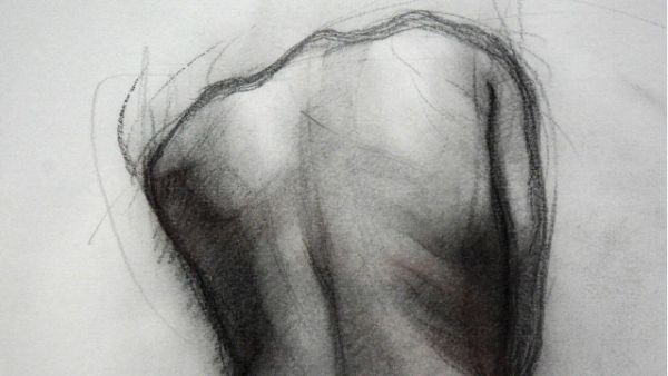 The Life Drawing Network